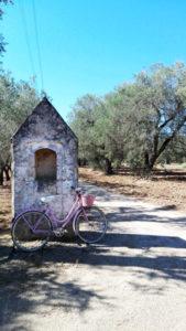 bicicletta in campagna