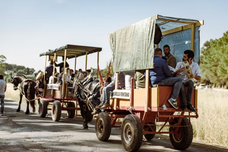 Tradizionale pellegrinaggio dei traini verso San cosimo alla macchia